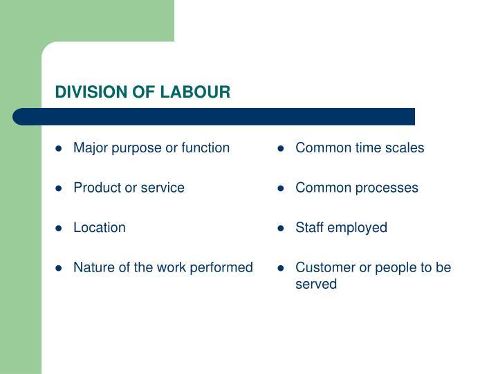 Major purpose or function