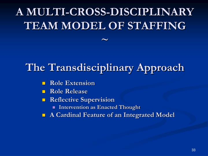 A MULTI-CROSS-DISCIPLINARY TEAM MODEL OF STAFFING
