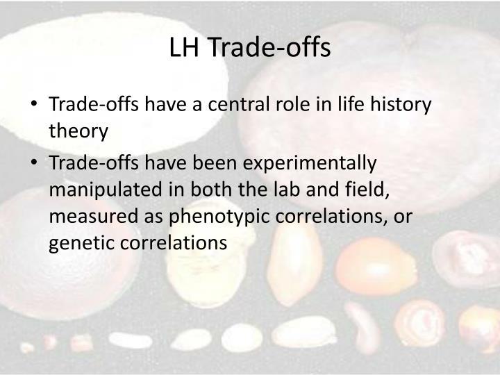 Lh trade offs