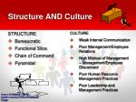 structure and culture