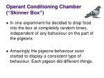 operant conditioning chamber skinner box7