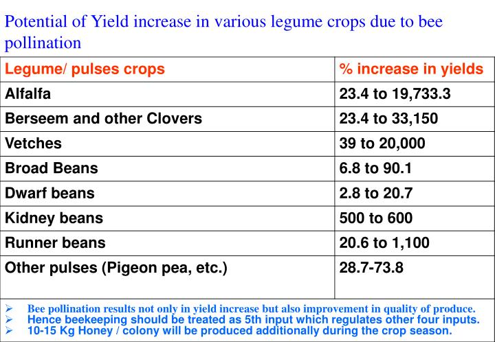 Potential of Yield increase in various legume crops due to bee pollination