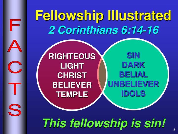Fellowship Illustrated