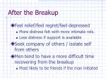 after the breakup