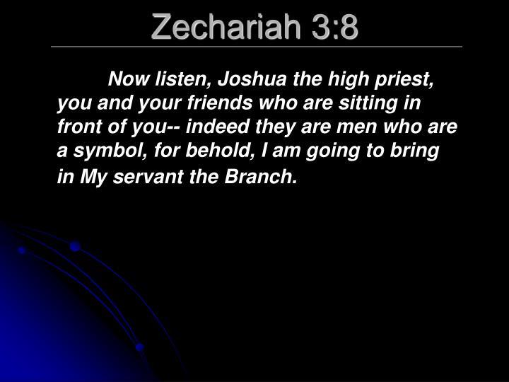 Zechariah 3:8