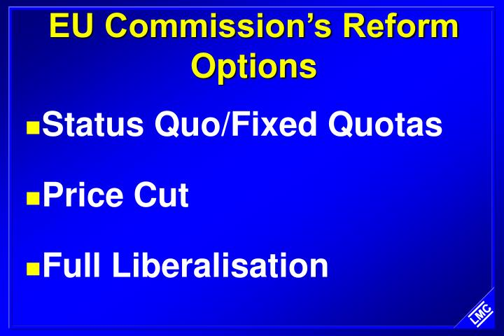 EU Commission's Reform Options