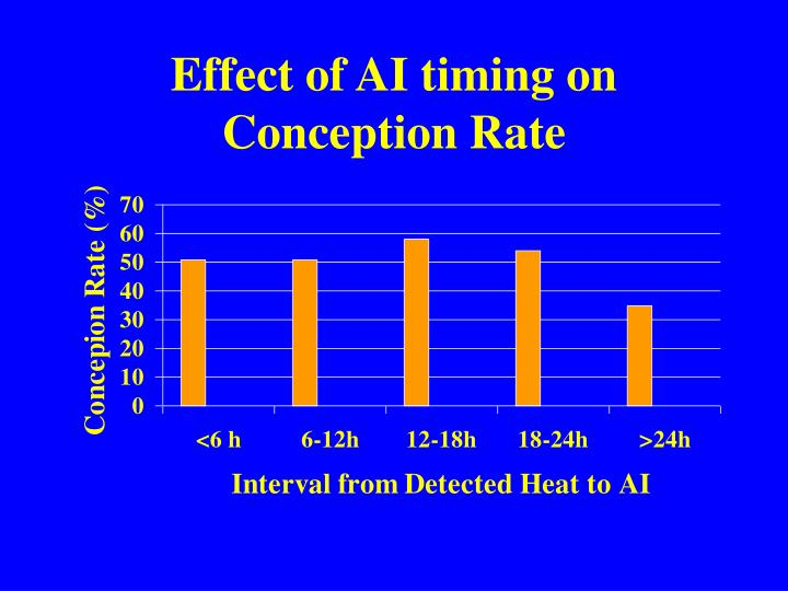 Effect of AI timing on Conception Rate