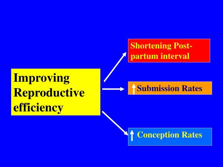 Shortening Post-partum interval