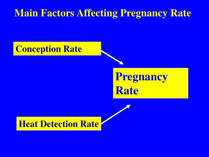 Main Factors Affecting Pregnancy Rate