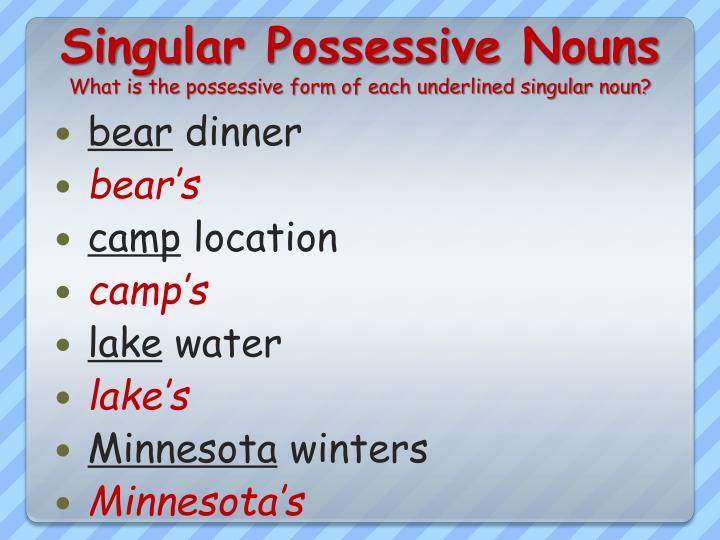 Singular Possessive