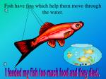 fish have fins which help them move through the water