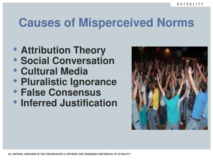 Causes of Misperceived Norms