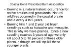coastal bend prescribed burn association11