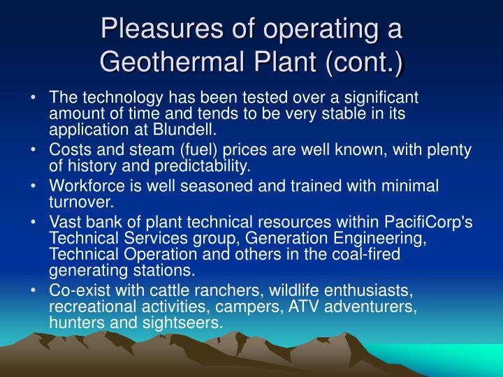 Pleasures of operating a Geothermal Plant (cont.)
