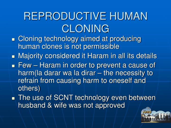 REPRODUCTIVE HUMAN CLONING
