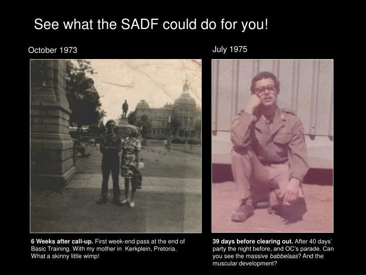 See what the SADF could do for you!