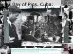 bay of pigs cuba april 17 1961