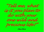 tell me what is it you plan to do with your one wild and precious life mary oliver