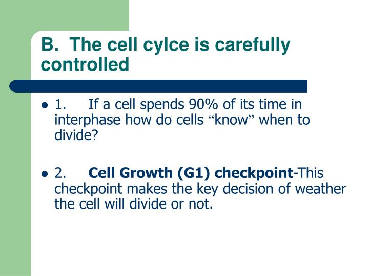 B.  The cell cylce is carefully controlled