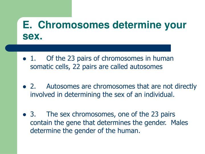 E.  Chromosomes determine your sex.