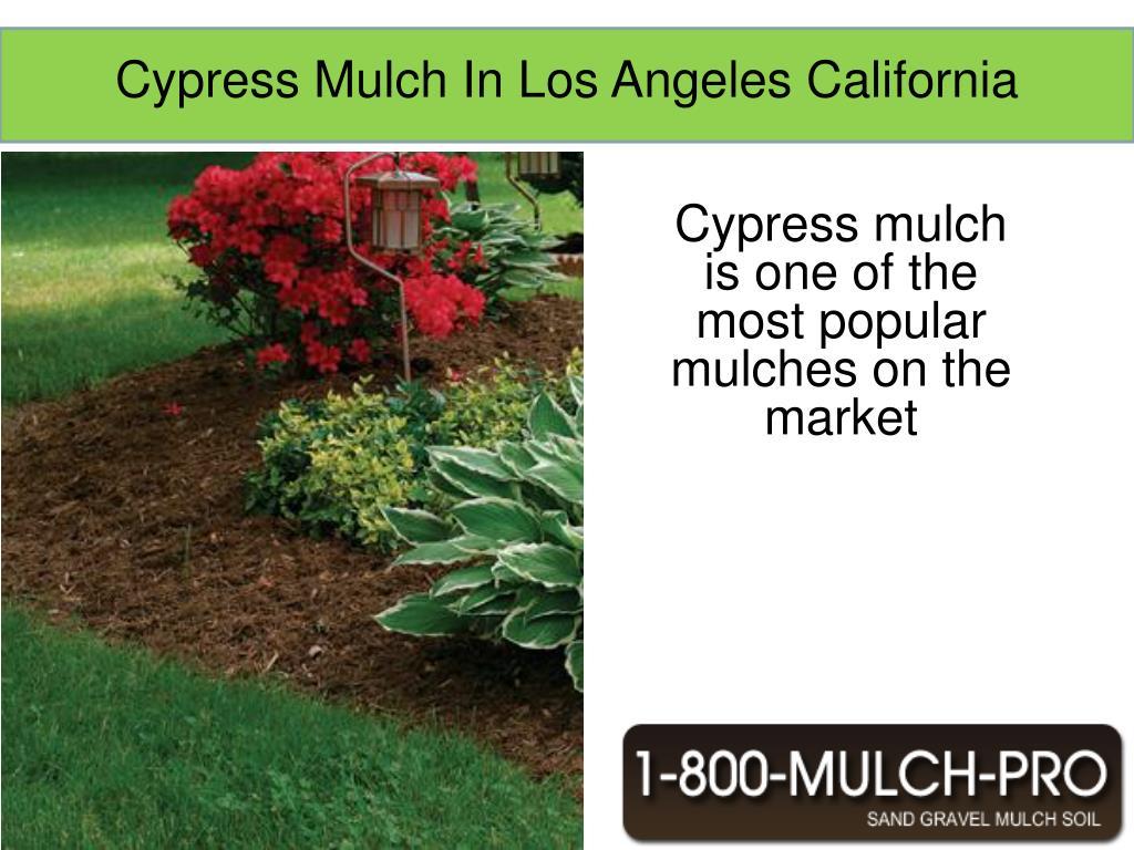 Cypress Mulch In Los Angeles California
