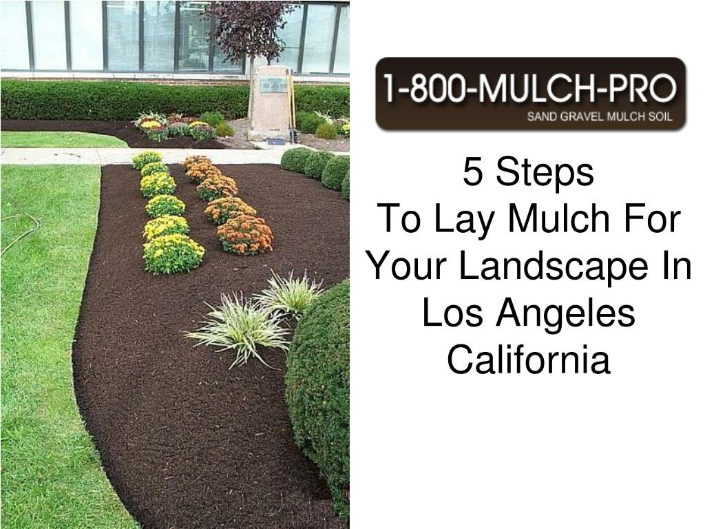 5 steps to lay mulch for your landscape in los angeles california l.