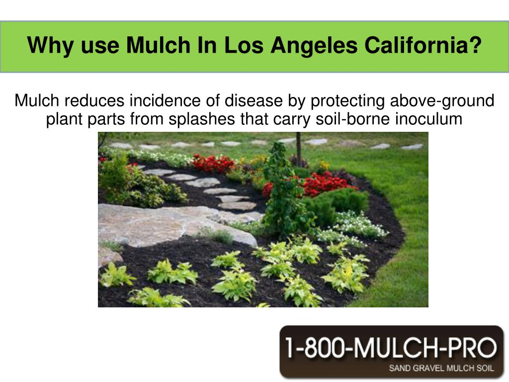 Why use Mulch In Los Angeles California?
