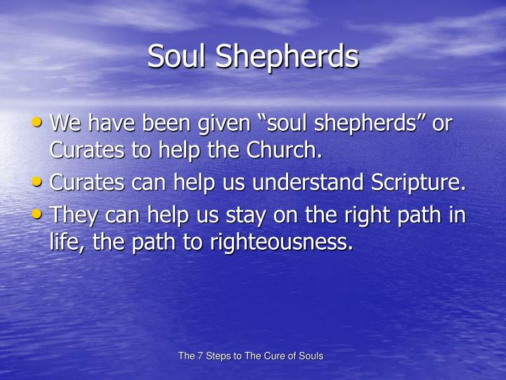 Soul Shepherds