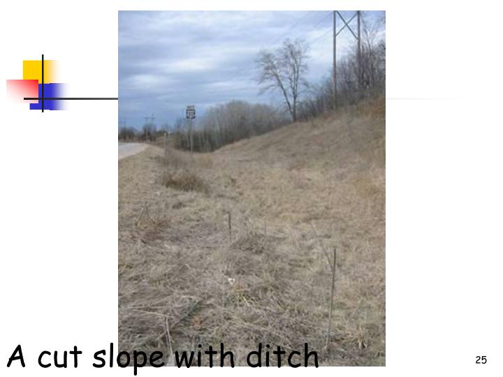 A cut slope with ditch