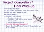 project completion final write up
