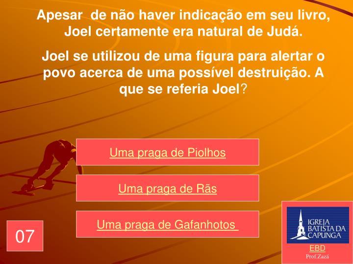 Apesar  de não haver indicação em seu livro, Joel certamente era natural de Judá.