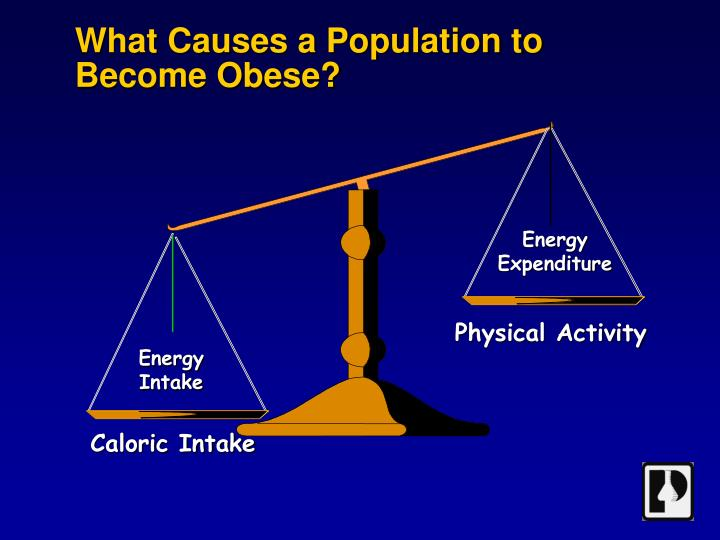What causes a population to become obese