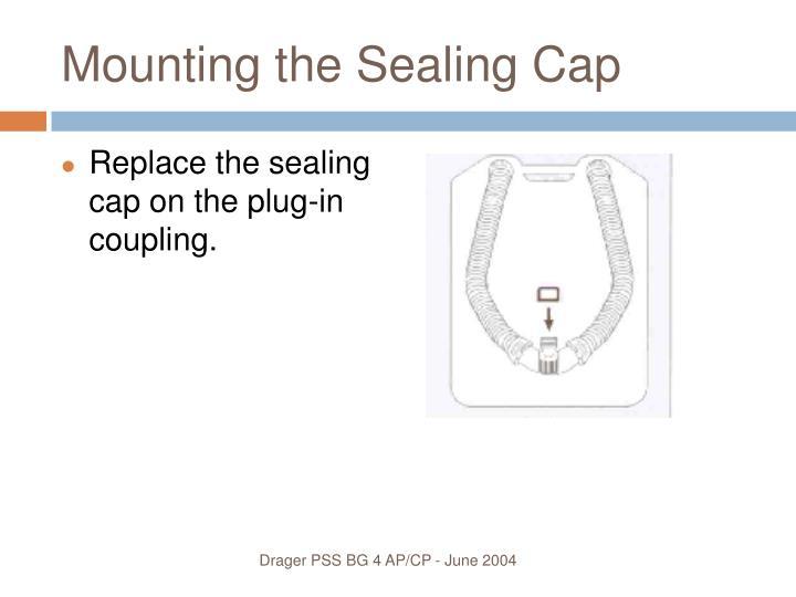 Mounting the Sealing Cap