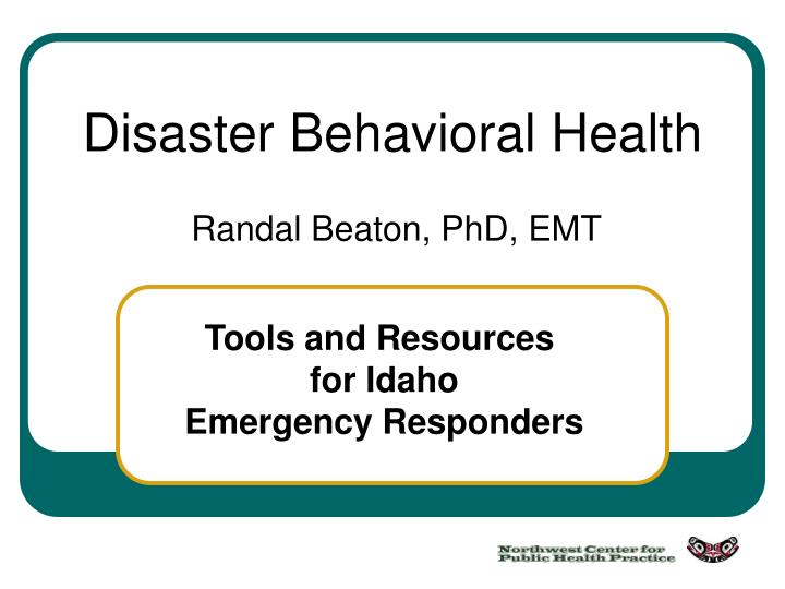 disaster behavioral health n.