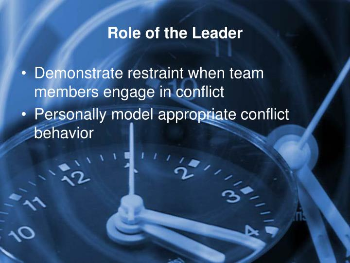 Role of the Leader
