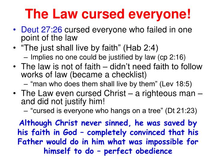 The Law cursed everyone!