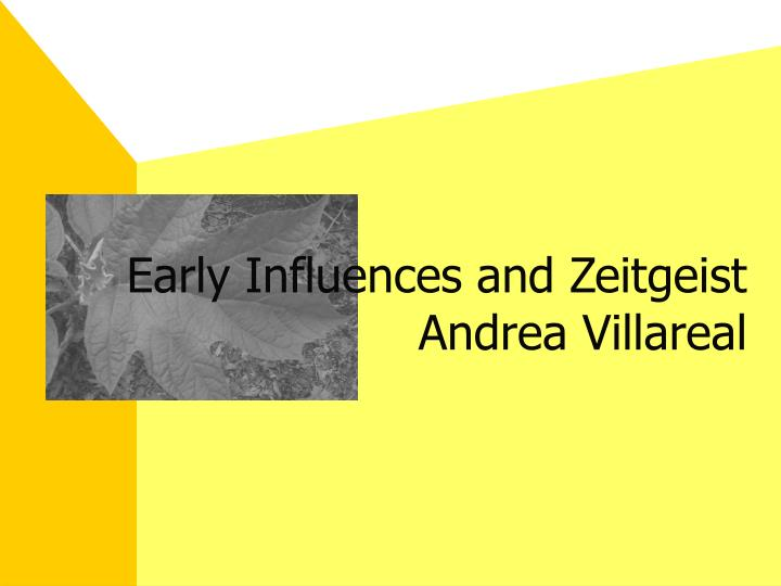 Early influences and zeitgeist andrea villareal