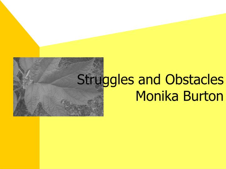 Struggles and Obstacles