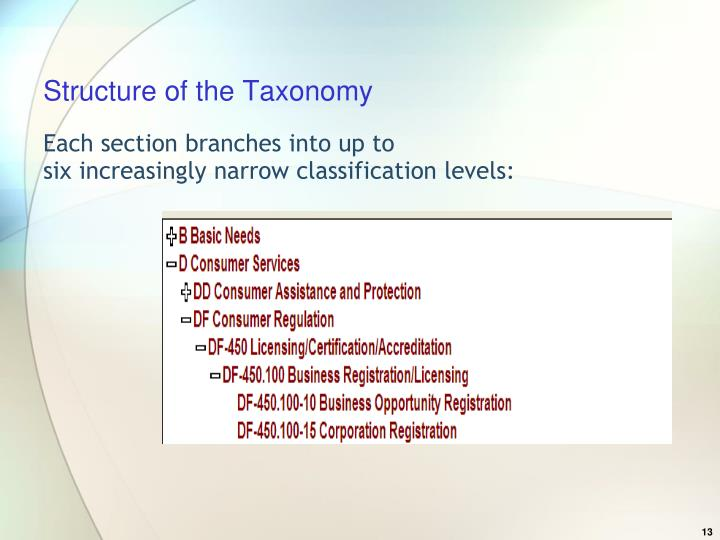 Structure of the Taxonomy