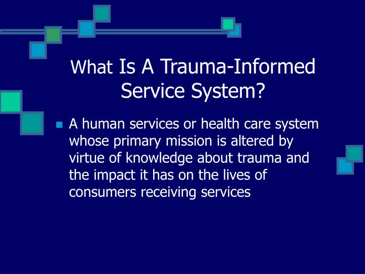 What is a trauma informed service system