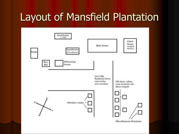 Layout of Mansfield Plantation