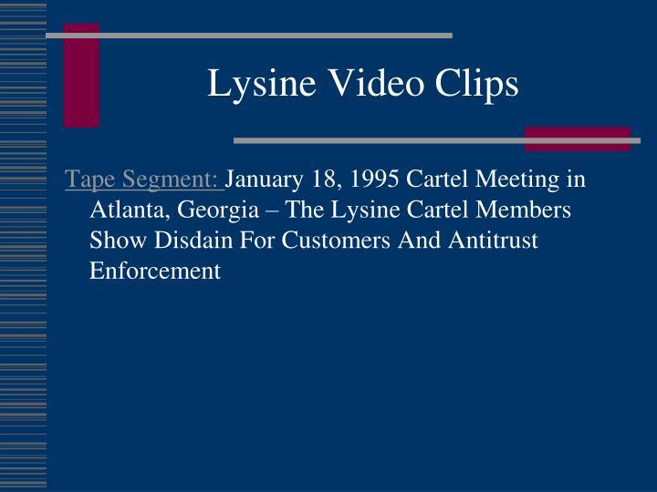 Lysine Video Clips