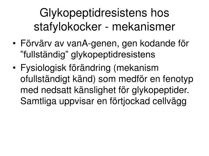 Glykopeptidresistens hos stafylokocker mekanismer