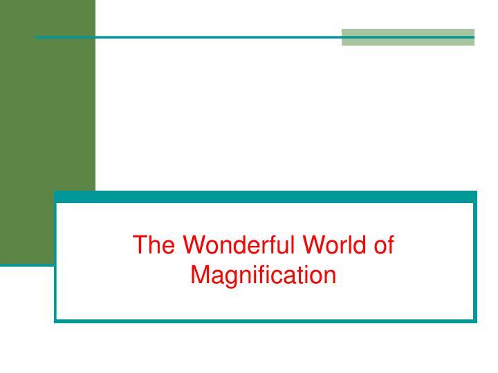 The Wonderful World of Magnification