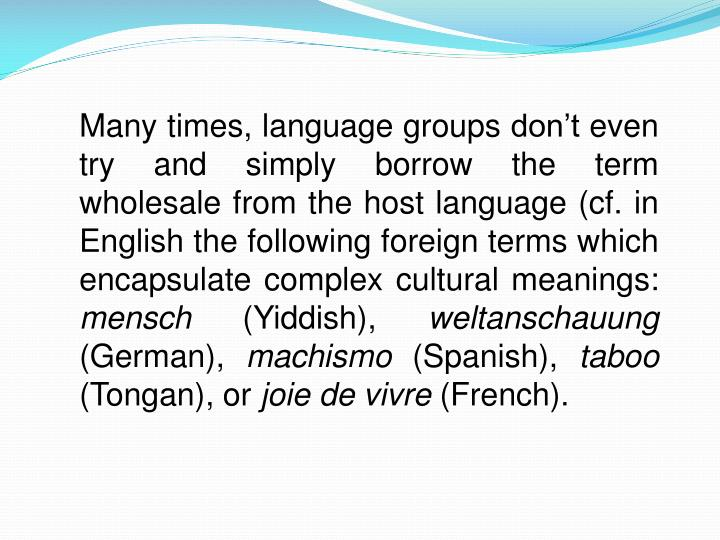 Many times, language groups don't even try and simply borrow the term wholesale from the host language (cf. in English the following foreign terms which encapsulate complex cultural meanings: