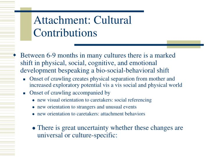 Attachment: Cultural Contributions