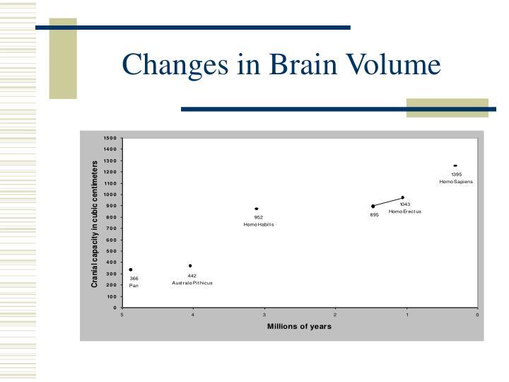 Changes in Brain Volume