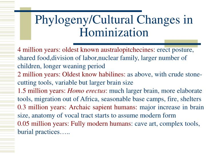 Phylogeny/Cultural Changes in Hominization