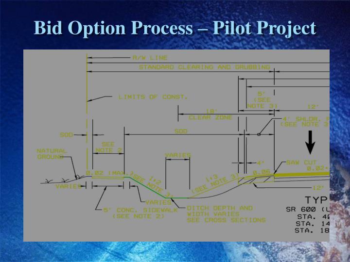 Bid Option Process – Pilot Project