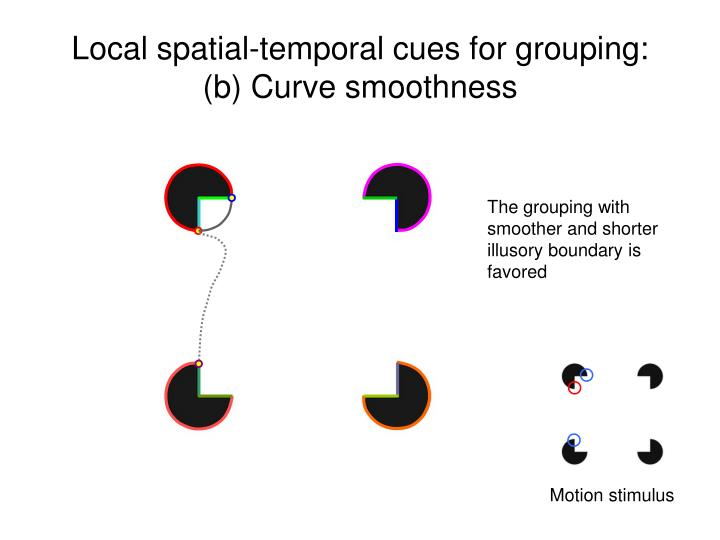 Local spatial-temporal cues for grouping: